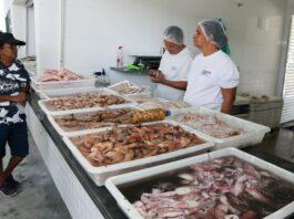 Com fim do defeso do camarão, venda do crustáceo movimenta Entreposto (Foto: Divuçgação/PMC)