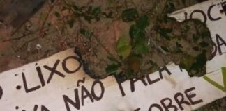 placas vandalizadas na praia do Capricórnio