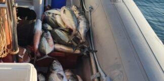 Seis autuados por pesca proibida em área protegida