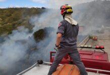 Bombeiro controla fogo em área localizada no Morro do Abrigo Foto: Divulgação/CB)