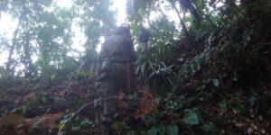 Equipes procuram homem desaparecido na mata (Imagem: PMA)
