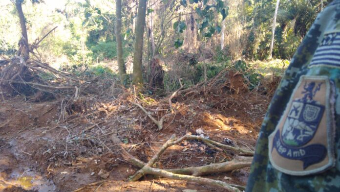 Crime ambiental em Ubatuba: mais de 2 mil metros quadrados desmatados (Imagem: Polícia Ambiental)