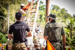 Equipes retiram cabo do poste de iluminação (Imagem: Polícia Ambiental)
