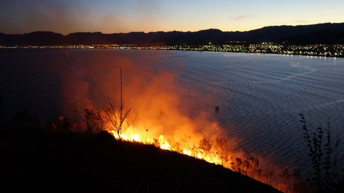 hectares queimados